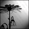 chryskid41 userpic