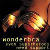 Novelist, lawyer, adventurer...: wonderbra