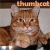 thumbcat userpic