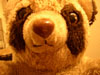 jamiebionic userpic