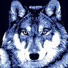 ravenwolf15 userpic