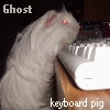 gpghost userpic