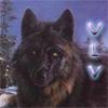 wargofthenorth userpic