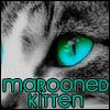 maroonedkitten userpic
