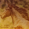 horse_graphix userpic