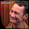 lupus_icons: amused