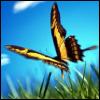 phoenixmuse userpic