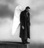 Damiel Wings of Desire
