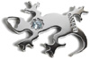 SilverSalamander