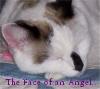 kitty_kat226 userpic