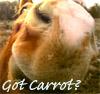 got carrot?