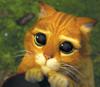 Lisa: sad Puss