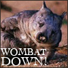 Wombat Down! by the_reverand