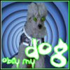 Obey My Dog by beautyqueen1979