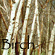 birch_household userpic