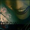 DA - Max: meow