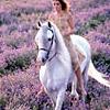Jo: Horse