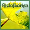 rieloflorien userpic