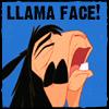 spirit_of_llama userpic