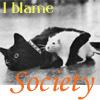 tiger0range: society