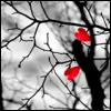 rockbriarsway userpic