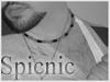 spicnic41 userpic