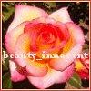 rose  credit: masheek2