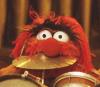 Geoff: Animal (eat drums)