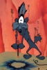 Geoff: Coyote (scorched)