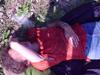 fael_lomelote userpic