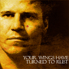 turned to rust_Angel