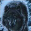 first_wolf userpic