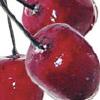 _cherriesontop userpic