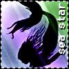 winged pixie