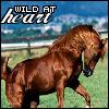 pony_clark_raf userpic