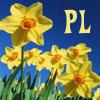 PL: PL daffodils