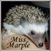 Mich: Miss Marple
