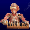 TCL MERGE ERROR ( 07/31/2009 22:35:52 ): chess