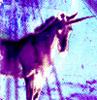 ragna_rok userpic