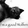 Laura: goodwolfen