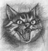 cargocat userpic