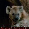 d00mguy userpic