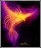 kari_phoenix