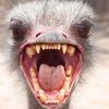 creepieoldman userpic