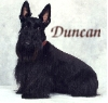 duncans_mom userpic