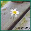 sundreams userpic