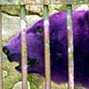 e123000alpha userpic