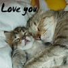 littlecatpuss userpic
