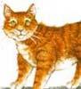 manxcat userpic