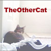 theothercat userpic